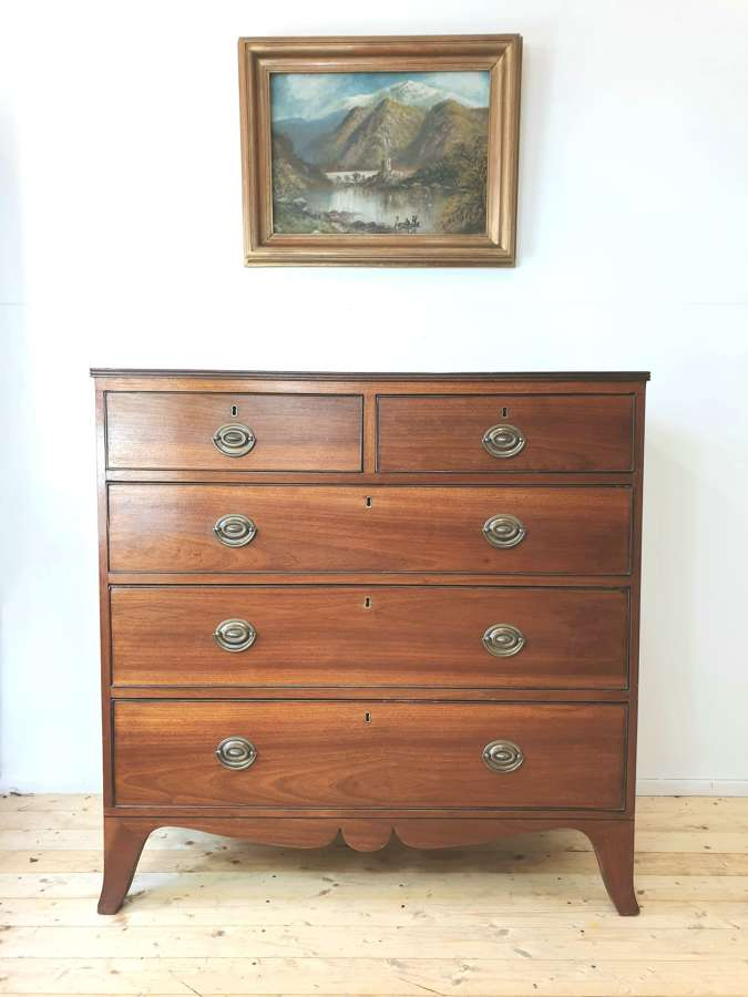 Georgian 19th Century Mahogany Chest of Drawers