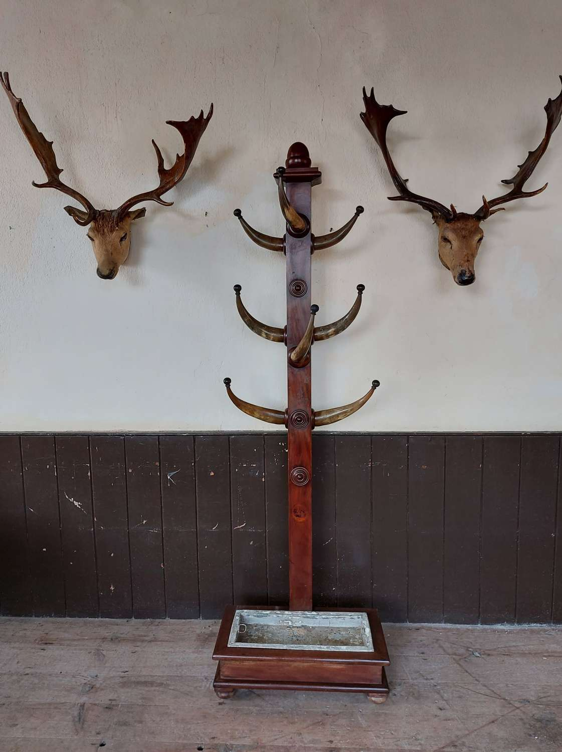 Late 19th Century Mahogany and Cow Horn Coat Stand